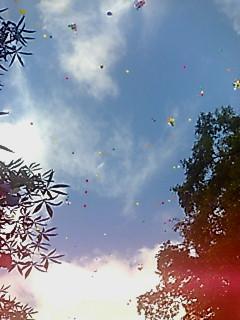 風船飛ばし2007.jpg